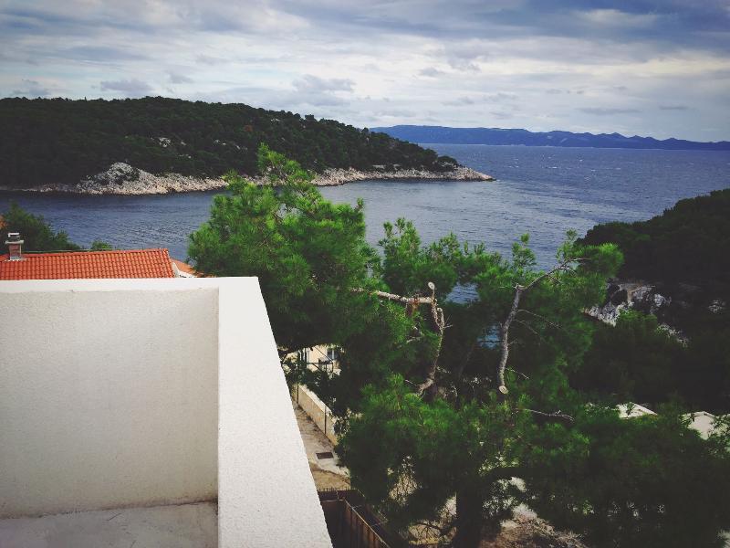 H(8): sea view - 7297  H(8) - Cove Osibova (Milna) - Cove Osibova (Milna) - rentals