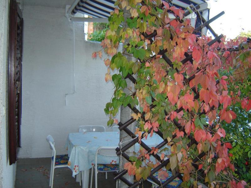 A4(4+1): garden terrace - 2506  A4(4+1) - Sukosan - Sukosan - rentals