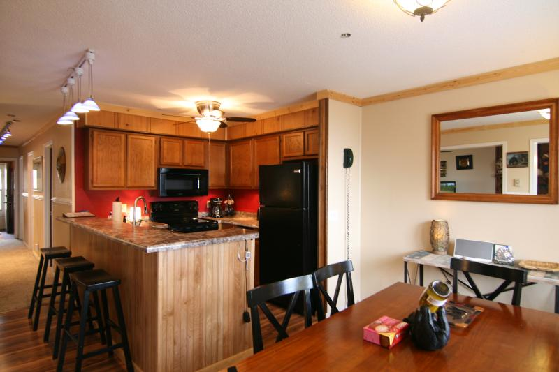 Mountian Top New Remodeled Condo Across from the Central Village - Image 1 - Snowshoe - rentals