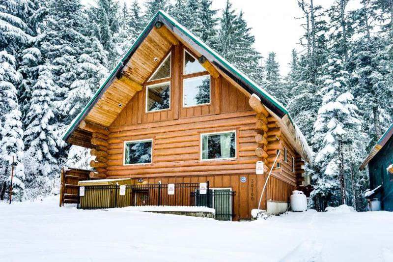 Two beautiful and spacious, dog-friendly mountain cabins with hot tub - Image 1 - Government Camp - rentals