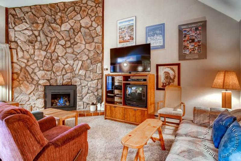 Park Place Condos 303E by Ski Country Resorts - Image 1 - Breckenridge - rentals