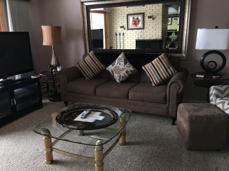 Living area with firepplace - 1 Bedroom/1 Bath Condo at Chateau Blanc- Unit 5 - Aspen - rentals
