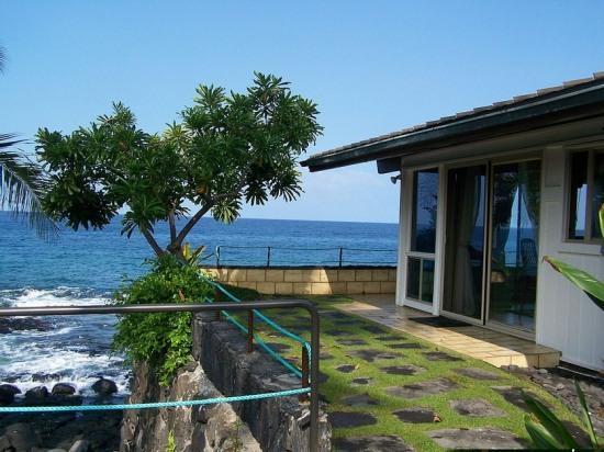 Apple Oasis- Oceanfront! Pool Table, Hammocks! - Image 1 - Kailua-Kona - rentals