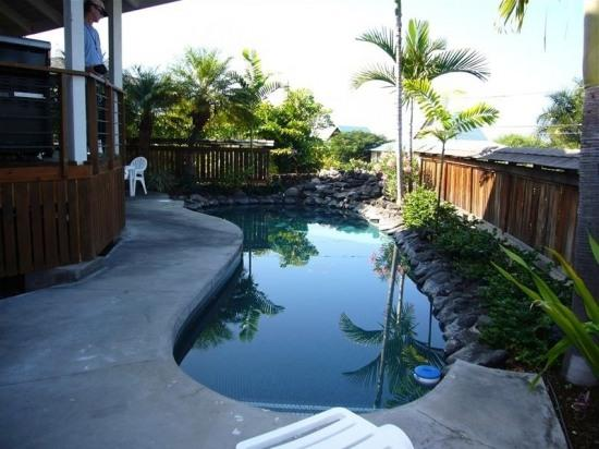 Splash Pool - Maluhia Hale- Block From Beach! Ultimate Privacy! - Kailua-Kona - rentals