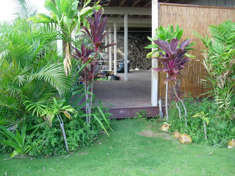 Aloha Welcome To Haena Hale - PRIVATE APARTMENT FOR 2  GREAT LOCATION-AMMENITIES - Waikoloa - rentals