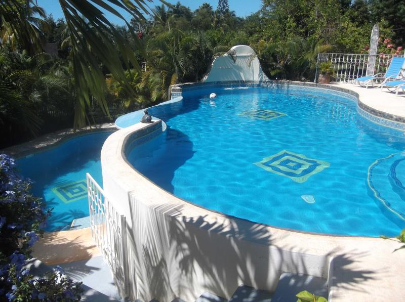 2 level pool - 1 BR apartment with designer pool & gardens - Puerto Escondido - rentals