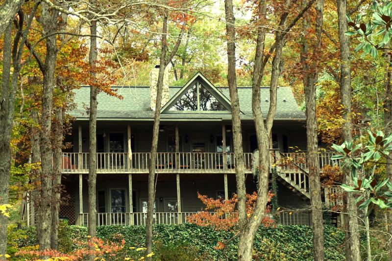 Exterior - Paradise Hills Resort & Spa ~ Cat's Meow Cabin - Blairsville - rentals