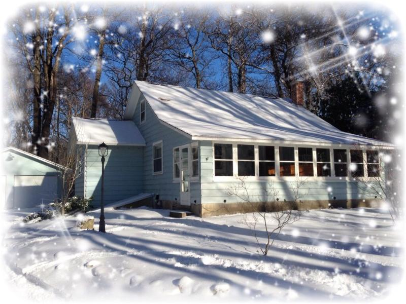 Winter Wonderland - COZY COTTAGE NEAR SAUGATUCK! - Fennville - rentals