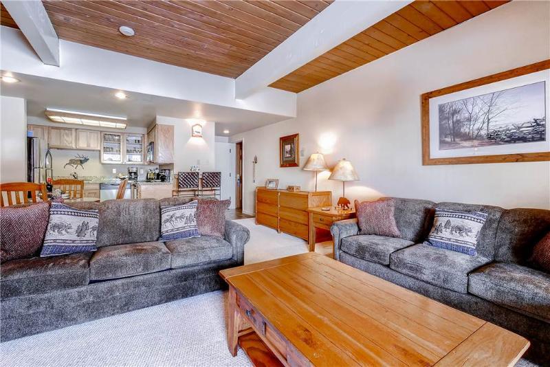 Ptarmigan House 20 - Image 1 - Steamboat Springs - rentals