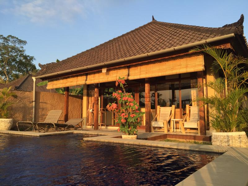 Hibiscus Cottage - Hibiscus Cottage pool, peace & views in Penestanan - Ubud - rentals
