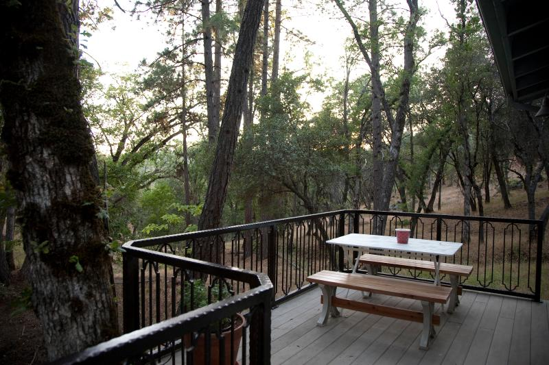Look! It's a deer, it's a fox, it's a wild turkey, a bobcat, it's...time for coffee. - Oak Nest Cottage~ Cozy, Cute, Quiet - Sonora - rentals