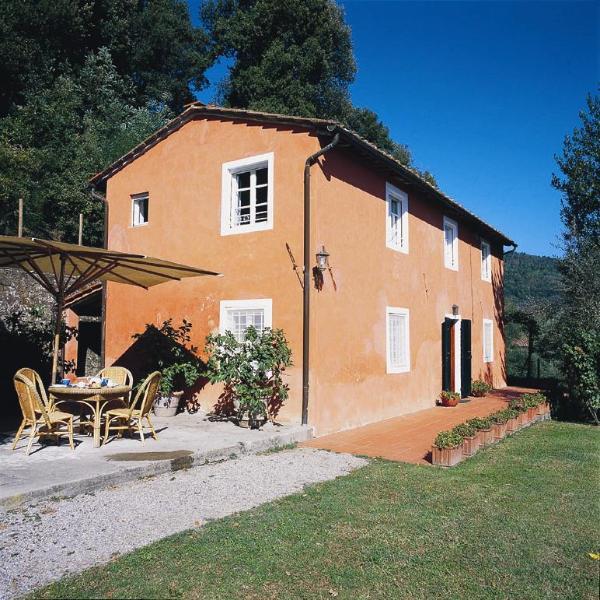 Casetta Maria Teresa - Image 1 - Lucca - rentals