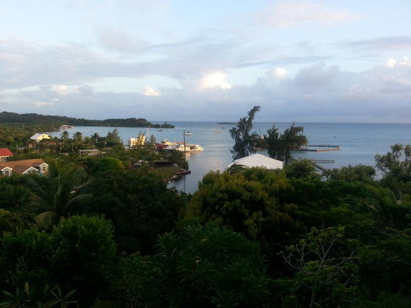 View from deck ! - The best kept secret in the Caribbean !!! - Guanaja - rentals