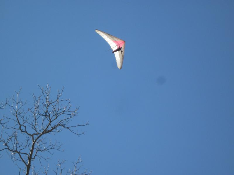 Hang Gliding in your back yard - Cloud land Condo, 16 miles downtown Mountain View! - Wildwood - rentals