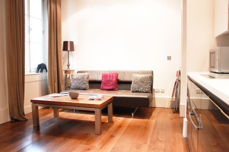 Mayfair House 1 Bedroom London Apartment - Image 1 - London - rentals