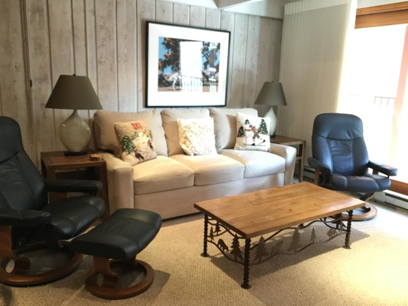 Living room - 2 Bedroom/2 Bath Condo At Chateau Blanc- Unit 7 - Aspen - rentals