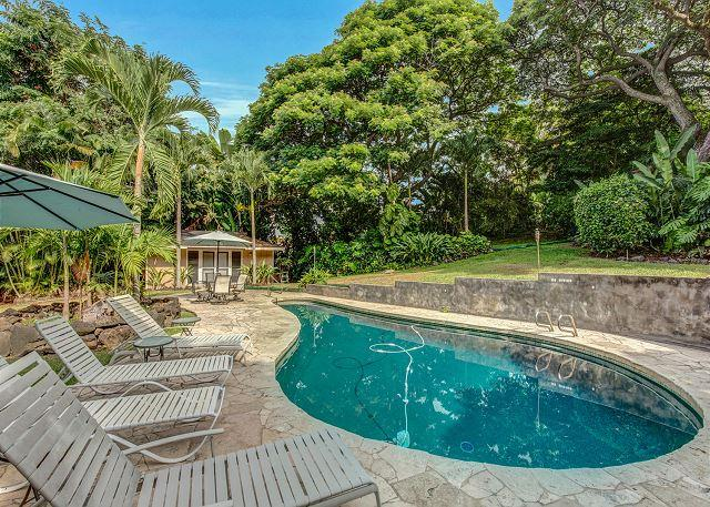 Private Pool with Lush Tropical Surroundings - Ocean view with Private Salt Water Pool - 4 Bedroom 4 Bath, Ohai House-PHOhai - Kailua-Kona - rentals