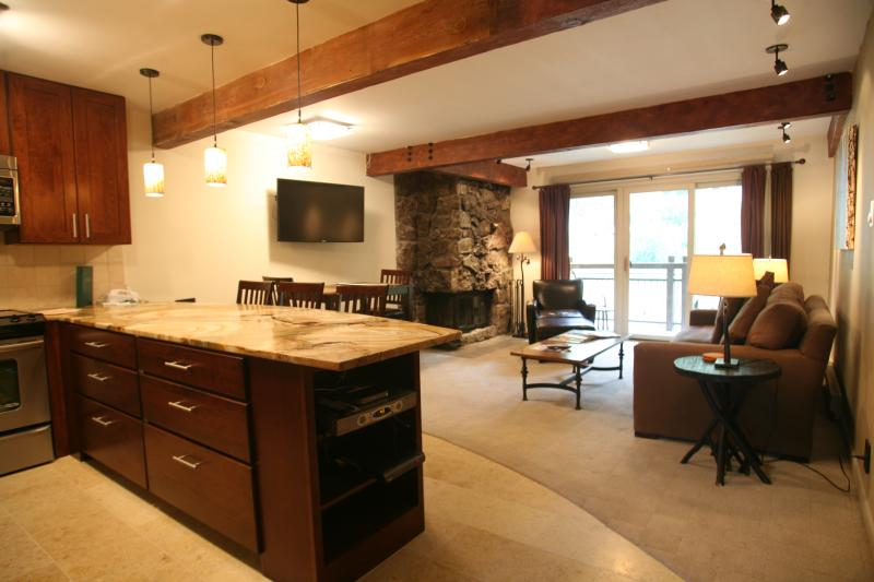 Kitchen/ Living-room - 1 Bedroom/1 Bathroom Condo in Aspen (Condo with 1 BR/1 BA in Aspen (Lift One - 409 - 1B/1B)) - Aspen - rentals