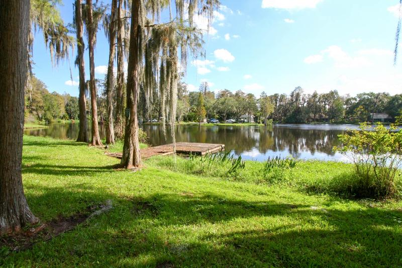 Immaculate and Incredibly Peaceful Lakefront House - Image 1 - Tampa - rentals