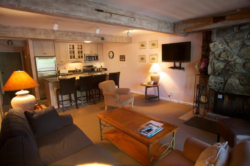 Living room - Beautiful 2 BR-2 BA Condo in Aspen (Aspen 2 BR & 2 BA Condo (Lift One - 103 - 2B/2B)) - Aspen - rentals