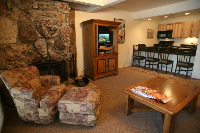 Living room - Gorgeous 1 BR & 1 BA Condo in Aspen (Aspen 1 BR & 1 BA Condo (Lift One - 104 - 1B/1B)) - Aspen - rentals