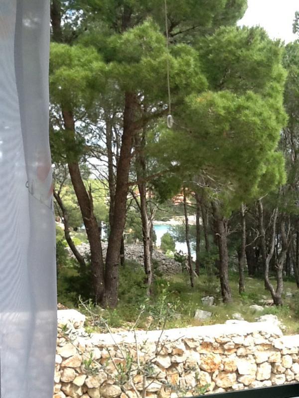 A2(2+1) Marijan: window view - 5575  A2(2+1) Marijan - Cove Osibova (Milna) - Cove Osibova (Milna) - rentals