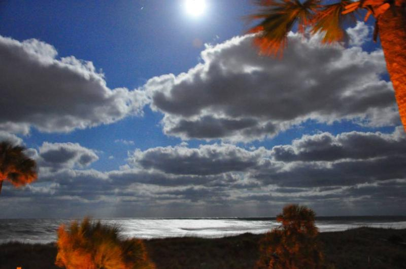 This photo was taken from the balcony - Sea Breeze is at the Beach! - Fernandina Beach - rentals
