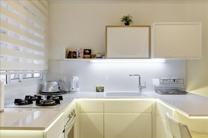 Deluxe White Studio - Image 1 - Tel Aviv - rentals