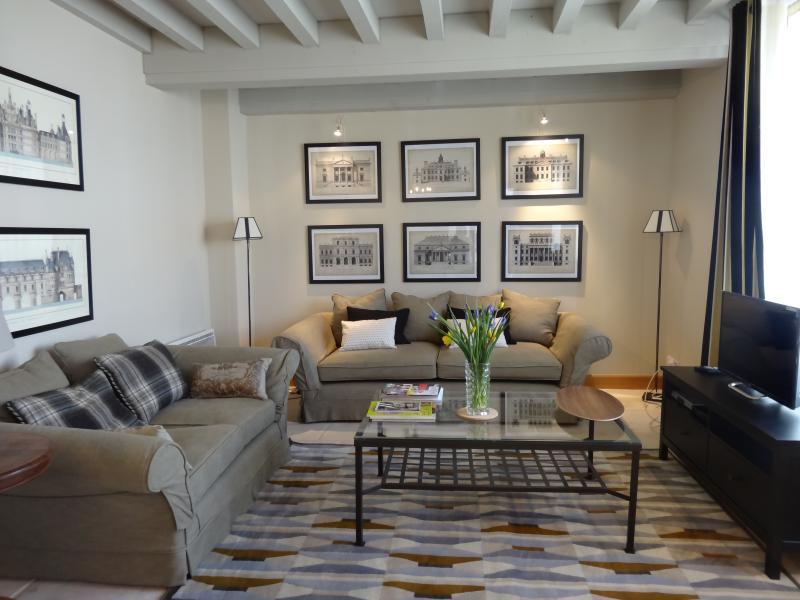 Spacious comfortable lounge - 7 Clos de Pommard, Pommard 3 bedrooms, sleeps 5 - Pommard - rentals