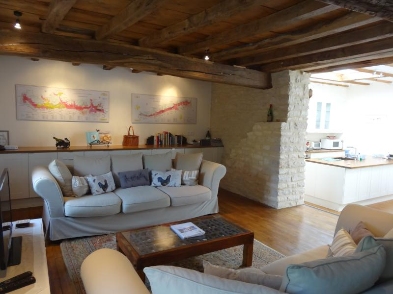 Spacious comfortable lounge, TV with both English and French channels - Le Chevalier, superb quality, 3bdr/3bth, terrace - Puligny-Montrachet - rentals