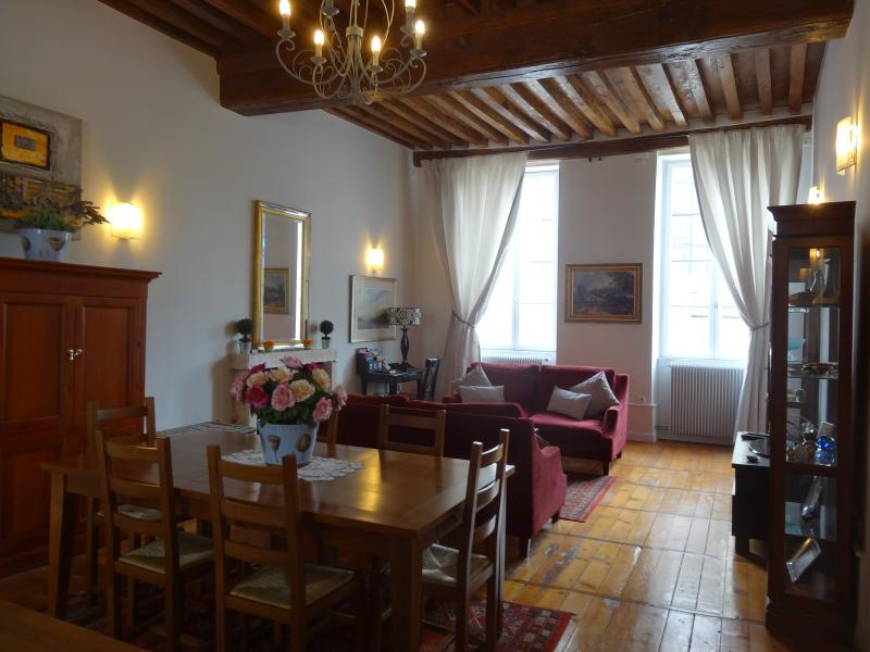 Spacious open plan lounge,dining - Porte St Nicolas, Beaune centre, spacious, light - Beaune - rentals