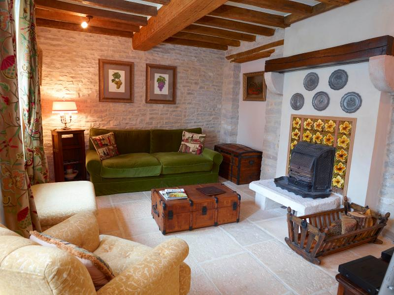 Lounge with operative fireplace - Chez Hall La Petite Maison delightful 17c Cottage - Meursault - rentals