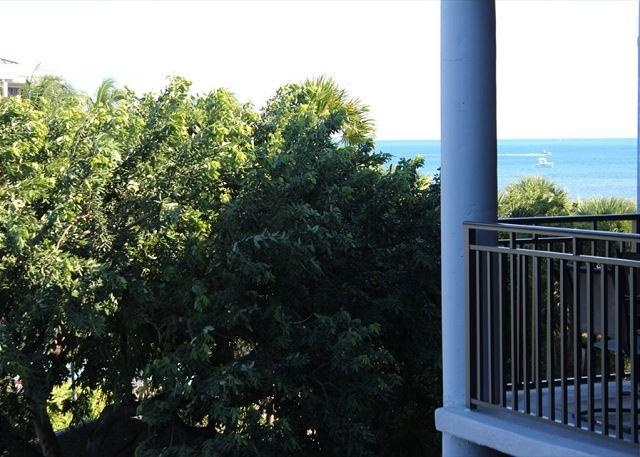 View from the Balcony - Elegant 3rd Floor 2 Bedroom Garden-view - Key West - rentals