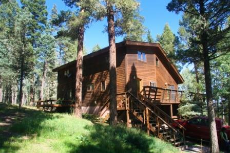 Cabin Fever - Image 1 - Angel Fire - rentals