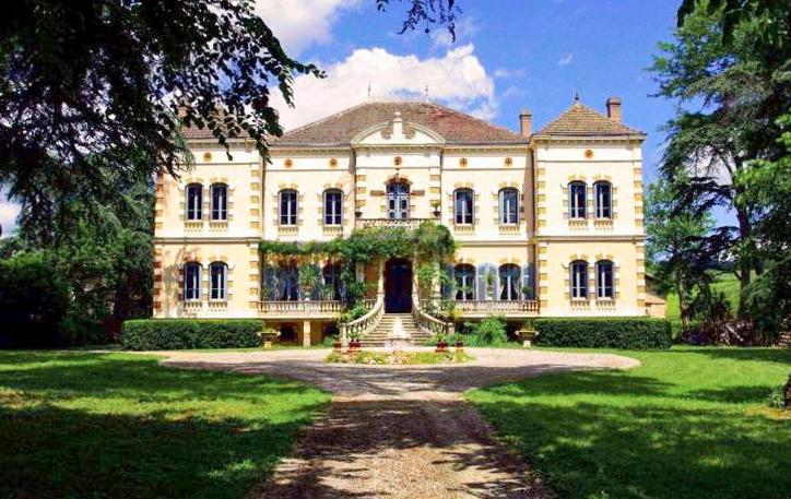 Chateau Gaillac - Image 1 - Montans - rentals