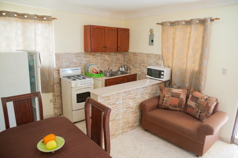 1 Bedroom fully furnished Apartment - Economic 1-Bedroom Apartment (6 Adults) - Terrace - Santo Domingo - rentals