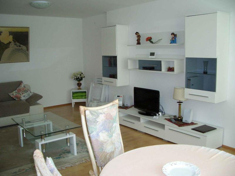 Vacation Apartment in Bad Waldsee - 1 bedroom, 1 living / bedroom, max. 3 persons (# 9247) #9247 - Vacation Apartment in Bad Waldsee - 1 bedroom, 1 living / bedroom, max. 3 persons (# 9247) - Bad Waldsee - rentals