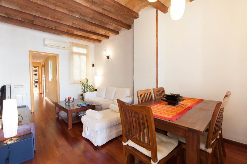 Living Room - Cosy&comfortable spacious central flat + WIFI - Barcelona - rentals