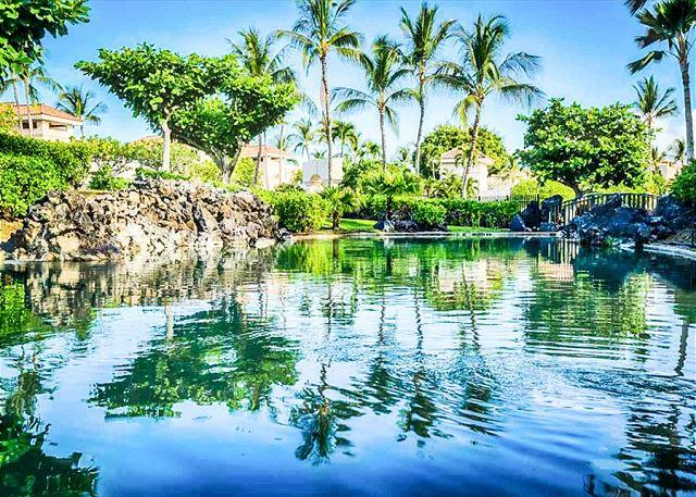 Beautiful Lagoon Views From Spacious Lanai - Beautiful Lagoon Views from Spacious Lanai! Picturesque and Peaceful! - Waikoloa - rentals