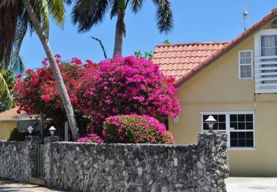 view from the front - Private Villa Set Behind Coral Wall, Ocean Views - West Bay - rentals