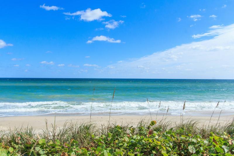 Sea Grape Beauty within walking distance of the beach! - Beach Area Duplex - Vero Beach - rentals