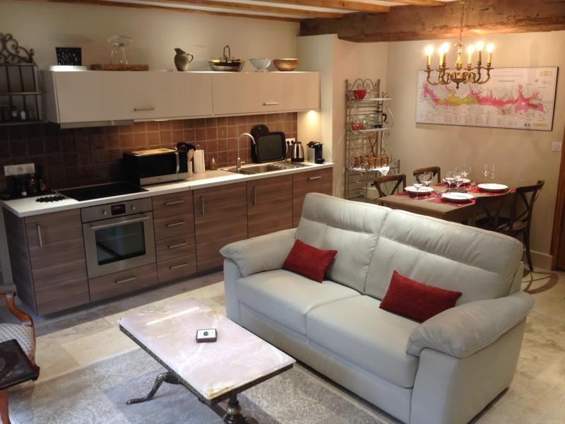 Open plan lounge, dining, kitchen - CHARMOT DE POMMARD, Cosy Apartment, central locale - Pommard - rentals