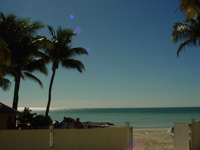 What's outside your window! - Key West Beach Front Rental Ocean is steps away - Key West - rentals