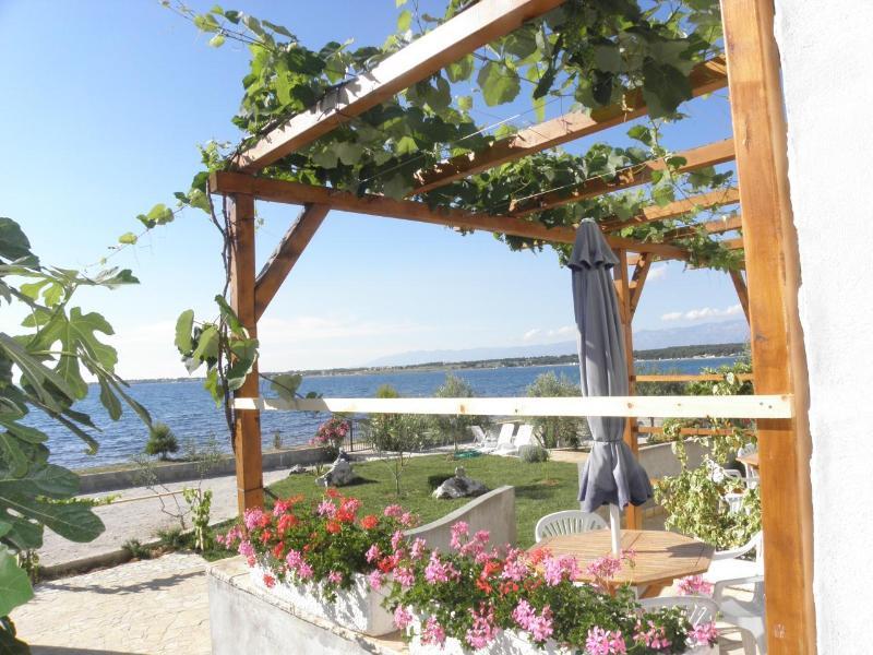 house - Ivo A1 Crveni (2+2) - Zaton (Zadar) - Zaton (Zadar) - rentals