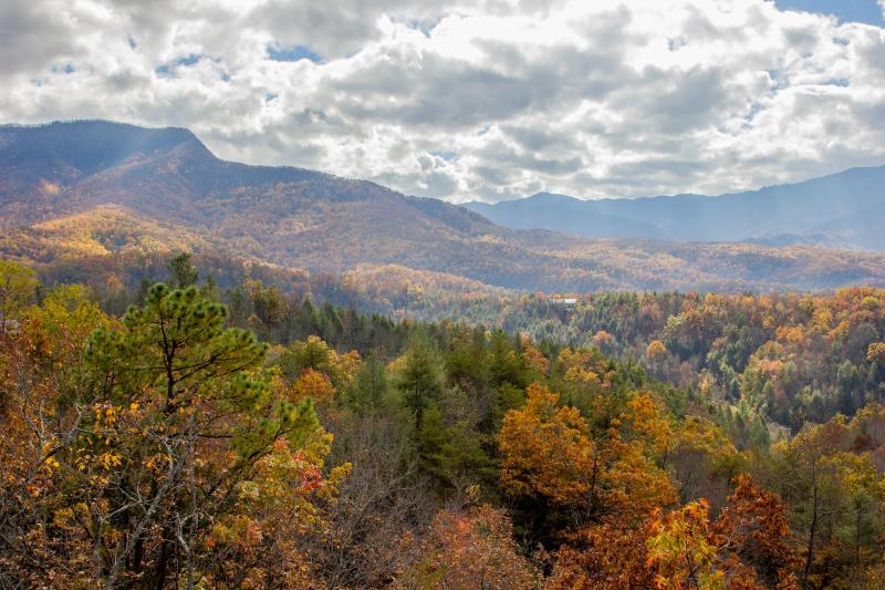 Amazing views! - Grand View Lodge -Luxury Log Cabin, Mountain View - Gatlinburg - rentals