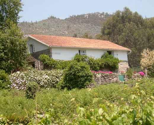 Os Salgieiros (the willows) - Country house with sea and mountain views - Combarro - rentals