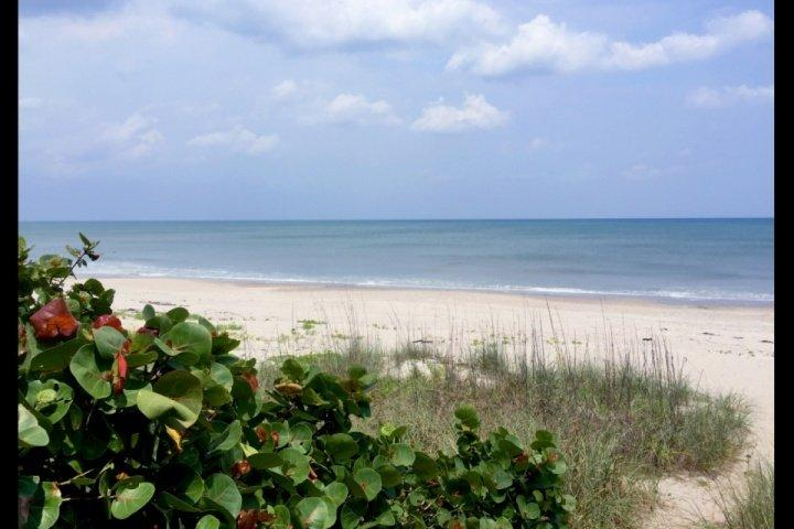 Beautiful beaches of Brevard County! - Remodeled Beach House, Steps from the Beach, Perfect for Families, Snowbirds! - Indialantic - rentals