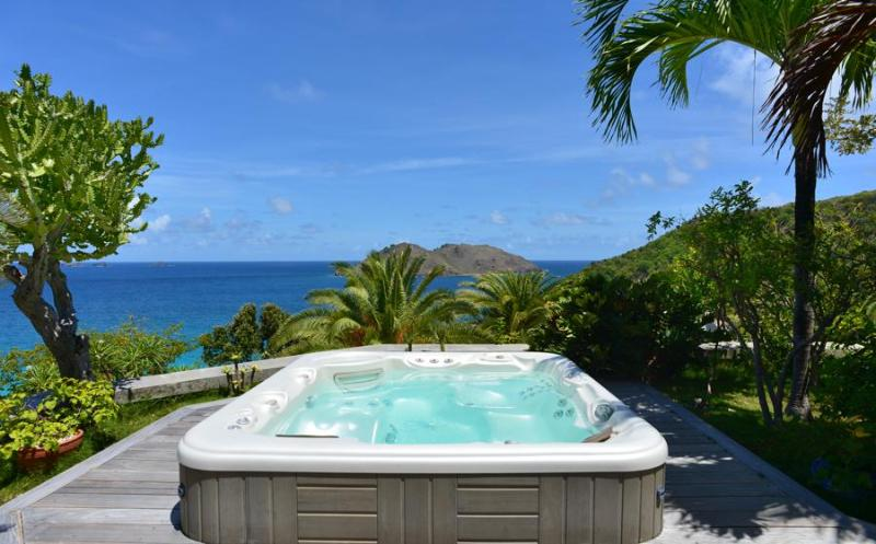 Aventura - Ideal for Couples and Families, Beautiful Pool and Beach - Image 1 - Saint Barthelemy - rentals