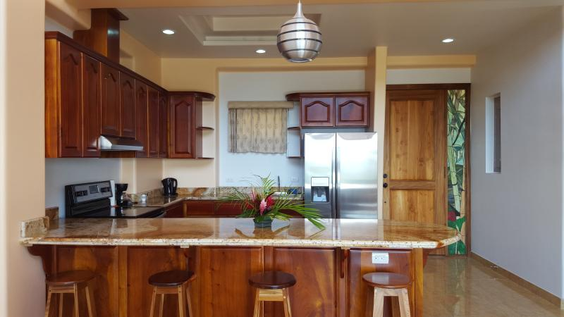 Kitchen - Arenal Maleku Luxury Condo 12-2-3-2 - Washington - rentals