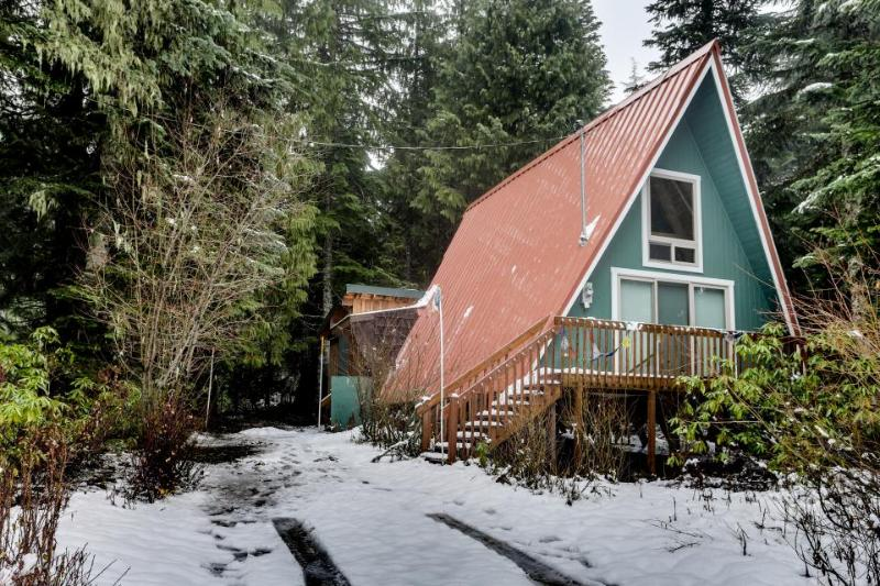Dog-friendly cabin with room for eight, close ski access! - Image 1 - Government Camp - rentals